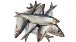 Riba za zdravo žensko srce
