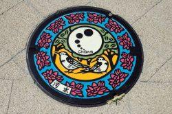 Nevjerovatna umjetnost japanskih šahtova