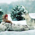 Magične fotografije djece Elene Karneeve