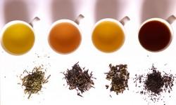 Šest najzdravijih vrsta čaja