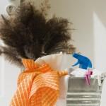 Kako da vam kuća bude čista i bez čišćenja
