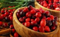 4 najznačajnije zdravstvene koristi brusnice
