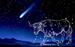 Horoskop: 9 zanimljivih osobina o muškarcu rođenom u znaku bika