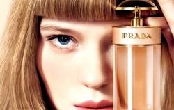Najbolji parfemi za ljeto 2013.