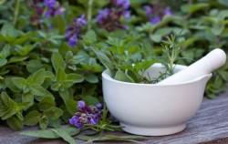 5 zdravstvenih problema koje možete izliječiti biljkama