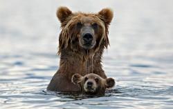 30 životinja sa neodoljivim mladuncima