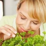 Iznenađujući načini upotrebe začina i ljekovitog bilja