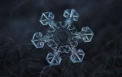 Spektakularne fotografije snježnih pahulja