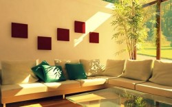 Kako da na prirodan i efikasan način uklonite buđ iz vašeg doma