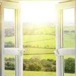 12 načina za brzu detoksifikaciju vašeg doma