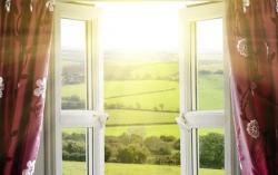 12 načina za brzu detoksikaciju vašeg doma