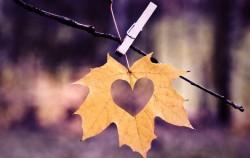 Razlika između zdrave i nezdrave ljubavi