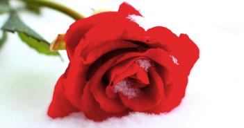 7 načina na koje hladnoća utiče na vašu vaginu